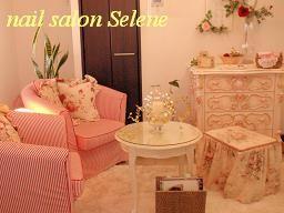 ネイルサロンセリーニ 完全プライベートサロン(Nail Salon Selene)