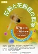 「花粉と花粉症の科学」 国立科学博物館