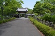 羅漢の寺に咲く紫陽花