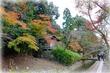 京都 哲学の道をぶらぶら