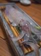 透き通った新鮮なイカと旬の幸を落ち着いた雰囲気で  博多表邸@薬院