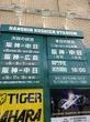 阪神甲子園球場 阪神VS中日