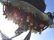 3月17日(木)『USJに「やり過ぎ」フライング・コースター登場 うつぶせで頭から落下』