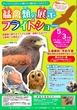 空飛ぶ犬!? / 流山市で猛禽類の展示&フライトショー