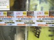 【新天地7周年記念】7周年「ラーメン新天地@本八幡」お得な記念イベント開催ちう!
