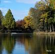 色づく丸山公園