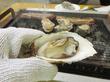 【福岡】JR&徒歩で行ける牡蠣小屋♪@カキの阿部 飛龍丸