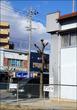 知立市にこだわりのコーヒー店がオープン!0566珈琲製作所