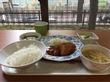 【神戸・ランチ1件目】気分は医大生♪「神戸大学生協 医学部医学科 食堂」