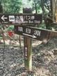河津七滝、滝めぐり|伊豆ジオパーク