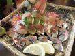 【福岡】魚もイケる地元志向の焼鳥居酒屋♪@山のかおり 炭処姪浜