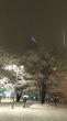 大雪のあとは…