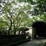 桑山美術館