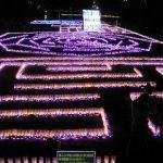 広島市植物公園 イルミネーション  (花と光のページェント ~クリスマス夜間開園~)