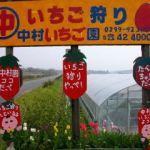 中村イチゴ園