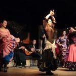 フラメンコ舞踊教室えるて