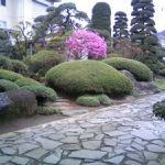 庭の平井造園