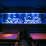 akivic AQUARIUM DINING
