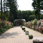 川越エンゼルパーク霊園