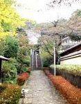 天宗山 東林寺