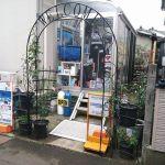 ダイビングスクール ライトハウス 新潟店
