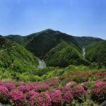 嵐山-高雄パークウエイ