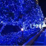 新宿ミナミルミ 2016
