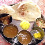インド料理 パンジャブレストラン 向店