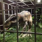 日光鬼怒川3D宇宙恐竜館