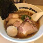 Sagamihara 欅