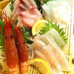 魚すこぶる 酒すこぶる  どうどう 川口店