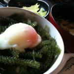 琉球茶屋 くわっちー