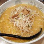 札幌本舗 #ramen #ラーメン レンゲが普通な味噌ラ。温いわ。