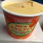 日本レストランエンタープライズあじさい 船橋店   アイス   今日のご褒美アイスは蜜柑  名古屋製酪製造  神奈川県、静岡県産みかん使用