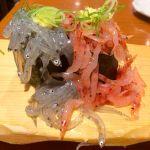 沼津 魚がし鮨 浜松駅メイワン店