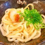 はなまるうどん イオン昭島店。おろしうどん。美味いです。シンプルなうどんが好きです。なんでも好きげすけとね。