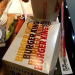バーガーキング 越谷イオンレイクタウン店 チーズバーガーとなんか鳥のやつ