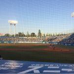 明治神宮野球場、三塁側ベンチ上、ひゃっほう!