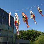 岡本太郎美術館に岡本太郎鯉のぼり!
