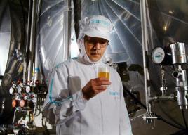 ビール・酒蔵・ワイナリー工場見学【大人向け】