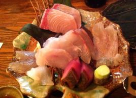 大森の魚が旨い居酒屋!おすすめ5選