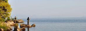 関西ワカサギ釣り~人気の余呉湖や滋賀、兵庫、奈良~