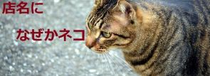 """東京の""""店名に猫(ネコ)がつくお店""""ばっかり集めたら名店だらけだった!"""