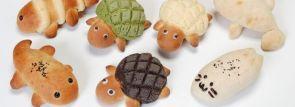 京都水族館の「すいぞくパン」がカワイイ、おいしい!