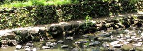 北海道・東北の水遊び公園・じゃぶじゃぶ池 【北海道・青森・秋田・山形・岩手・宮城・福島】