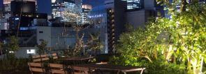 銀座の緑溢れる屋上空間で1組貸切BBQ!「REAL BBQ PARK ginza」8/1オープン