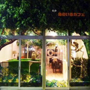 東京の動物系カフェ~フクロウ・犬・猫・うさぎのもふもふ癒されたい!~