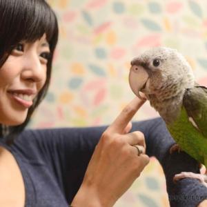 鳥カフェ特集 フクロウ、インコなどが見られる鳥カフェまとめ