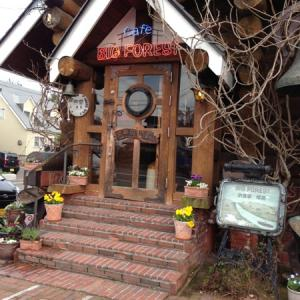 BIG FOREST・・・Log House cafe restaurant