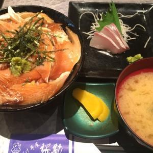 づけ丼屋 桜勘(*´ڡ`○)かんぱちのづけ丼